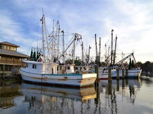 Fishing boats at dock in Apalachicola, Florida.